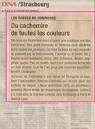 DNA Strasbourg Cachemire Hermine